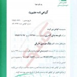 Ranking Certificate-03